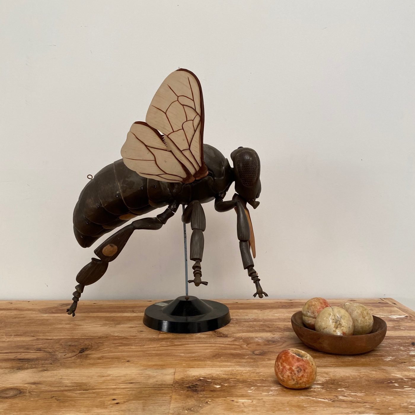 fly-skin-statue0001