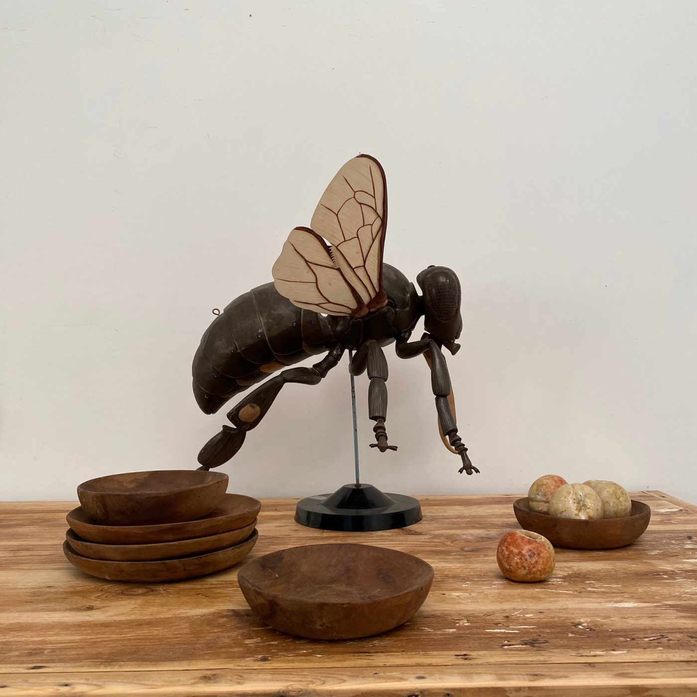 fly-skin-statue0007