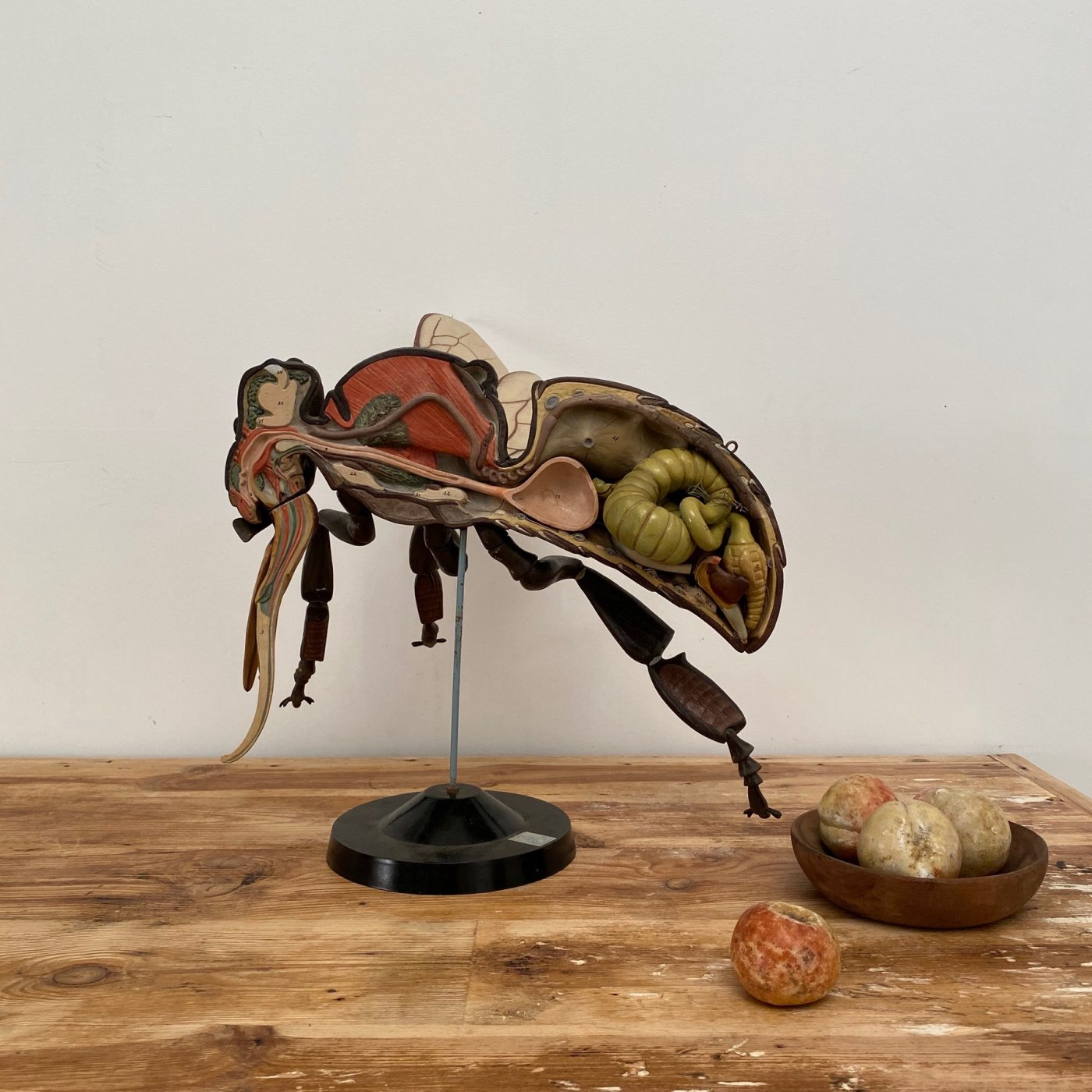 fly-skin-statue0009